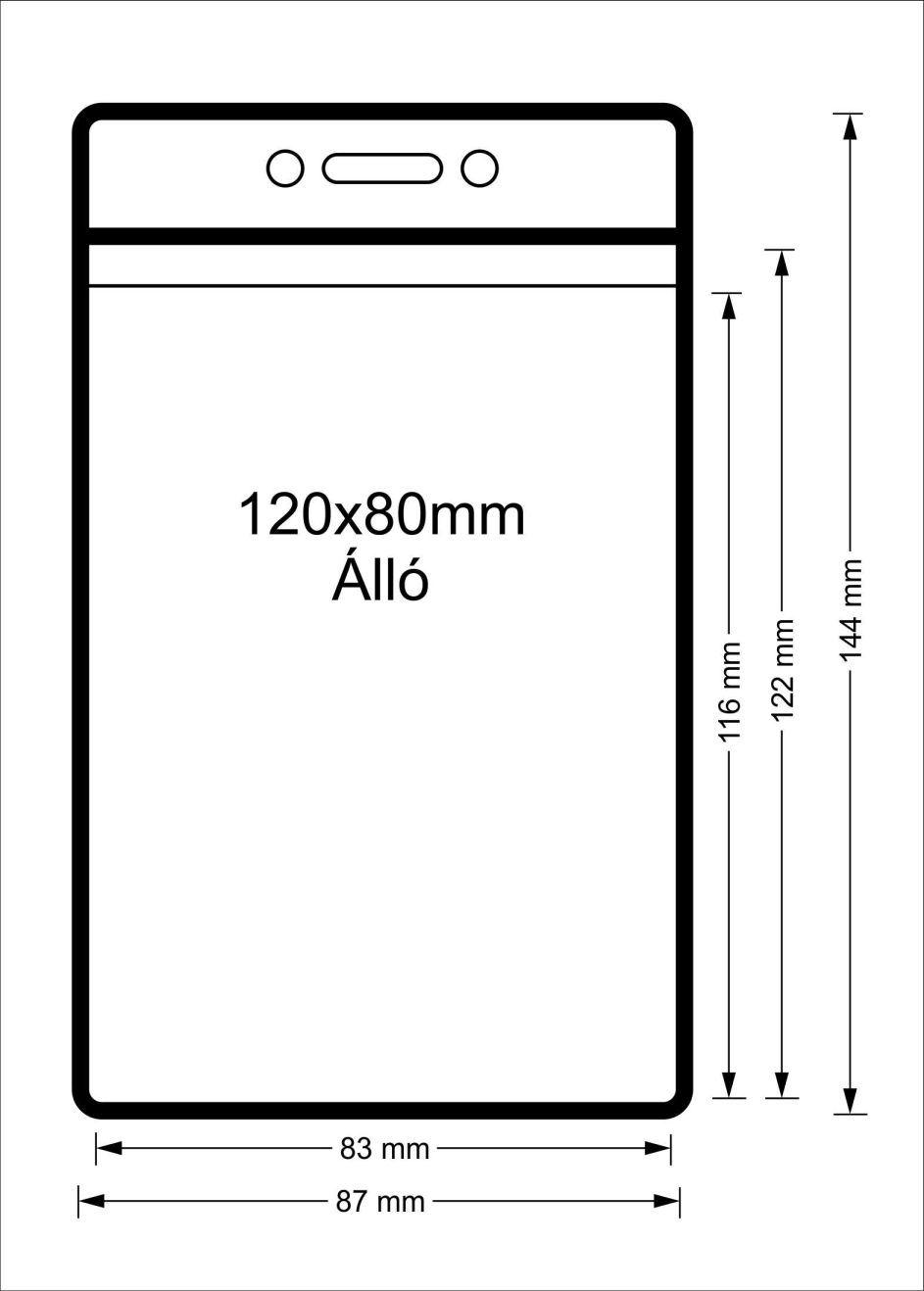 Vinyl tasak (álló, 120x80mm)